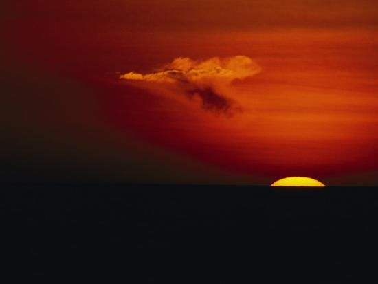 Red Sky at Sunset with the Sun on the Horizon and a Goose-Shaped Cloud-Tim Laman-Photographic Print
