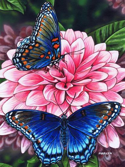 Red Spotted Purple-Marilyn Barkhouse-Art Print