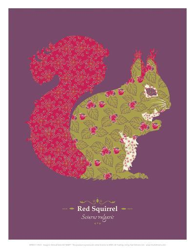 Red Squirrel - WWF Contemporary Animals and Wildlife Print- WWF-Art Print