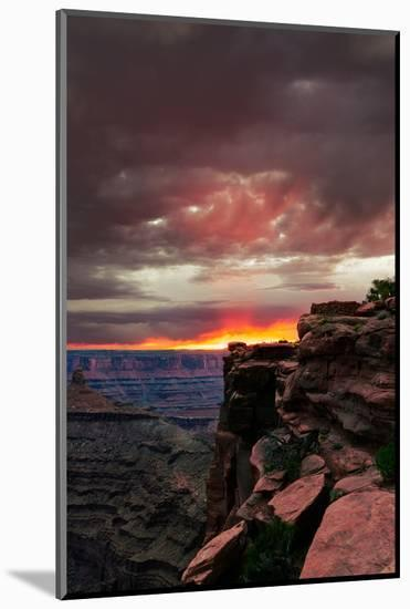 Red sunset with moody clouds and red rock canyons in Dead Horse Point State Park near Moab, Utah-David Chang-Mounted Premium Photographic Print