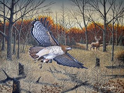 https://imgc.artprintimages.com/img/print/red-tailed-hawk_u-l-q1cwfgr0.jpg?p=0