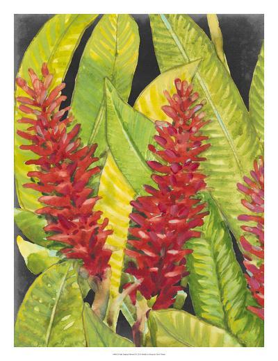 Red Tropical Flowers I-Tim OToole-Giclee Print
