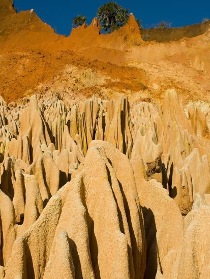 Red Tsingys, Strange Looking Sandstone Formations, Near Diego Suare (Antsiranana), Madagascar-Michael Runkel-Photographic Print