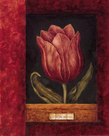 https://imgc.artprintimages.com/img/print/red-tulip_u-l-f1kf0u0.jpg?p=0