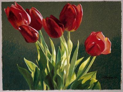 Red Tulips-Helen J^ Vaughn-Giclee Print