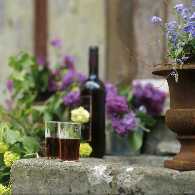 Red Wine Glasses & Red Wine Bottle on Stone Trough with Flowers-Christine Gill?-Photographic Print