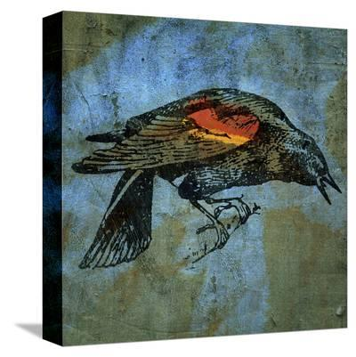Red Wing Blackbird No. 1-John Golden-Stretched Canvas Print