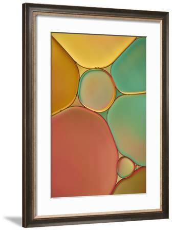 Red Yellow and Green Drops-Cora Niele-Framed Photographic Print