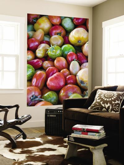 Red, Yellow and Green Tomatoes-Ray Laskowitz-Wall Mural