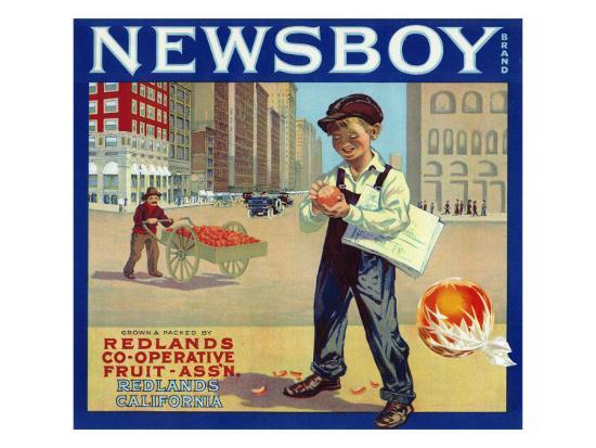 Redlands, California, Newsboy Brand Citrus Label-Lantern Press-Art Print