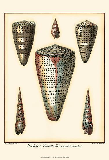 Redoute Shells II-Pierre-Joseph Redout?-Art Print