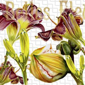 Belles Fleurs III by Redstreake