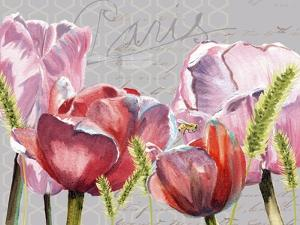 Blush Tulips I by Redstreake