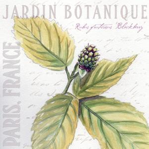 Jardin Fleur I by Redstreake
