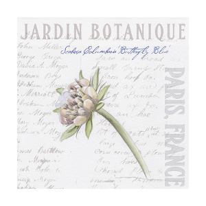Jardin Fleur II by Redstreake