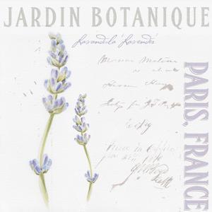Jardin Fleur IV by Redstreake