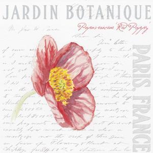 Jardin Fleur VII by Redstreake