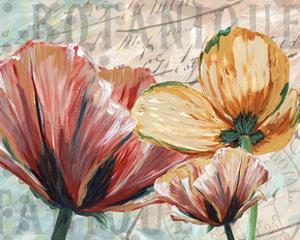 Poppy Layers I by Redstreake
