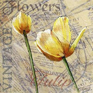 Vintage Flower Collage III by Redstreake