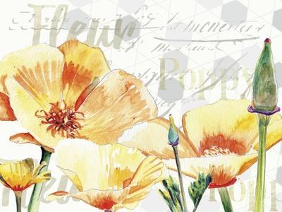 Yellow Poppy I