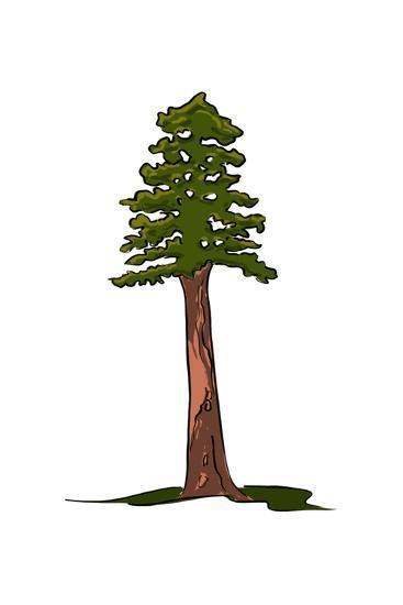 Redwood Tree - Icon-Lantern Press-Art Print