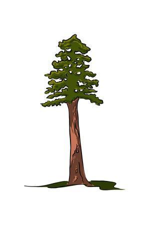 https://imgc.artprintimages.com/img/print/redwood-tree-icon_u-l-q1grck20.jpg?p=0
