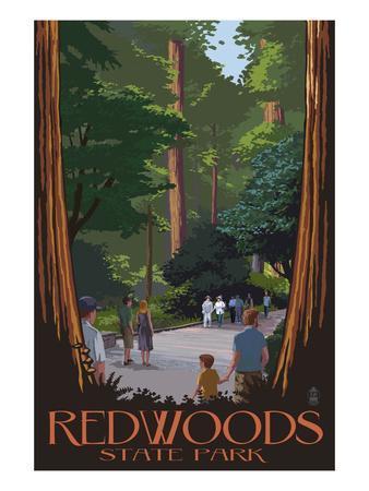 https://imgc.artprintimages.com/img/print/redwoods-state-park-boardwalk_u-l-q1gpmmm0.jpg?p=0