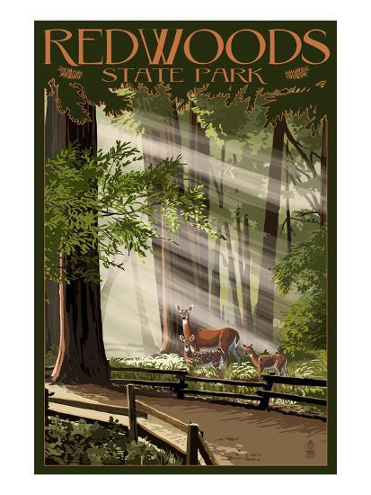 Redwoods State Park - Deer and Fawns-Lantern Press-Art Print