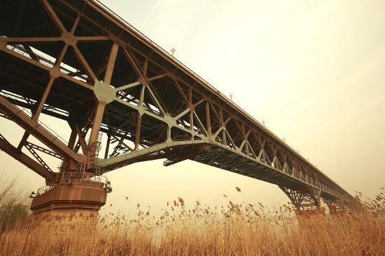 Reed the Foreground and Steel Bridge in Autumn-Aylandy-Photographic Print