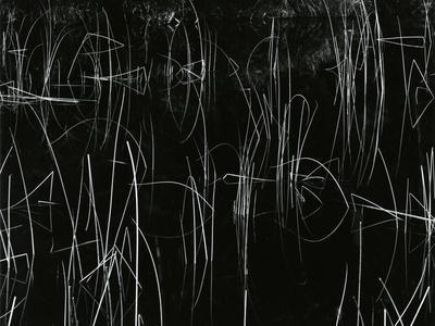 https://imgc.artprintimages.com/img/print/reeds-oregon-1975_u-l-q1g6ptg0.jpg?p=0