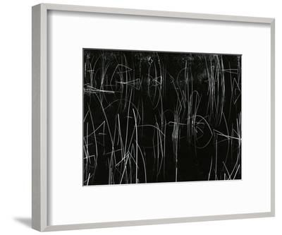 Reeds, Oregon, 1975-Brett Weston-Framed Photographic Print