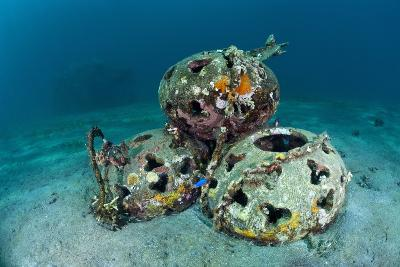 Reef Balls on the Sea Bed, Indonesia-Matthew Oldfield-Photographic Print