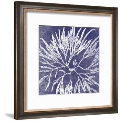 Reef I-Maria Mendez-Framed Art Print