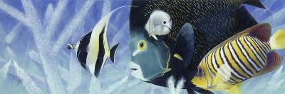 Reef I-Durwood Coffey-Giclee Print