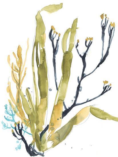 Reef Illusion II-Jennifer Goldberger-Art Print