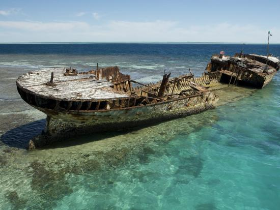Reef Wreck of the Protector, Australia's First Naval Vessel-Tim Laman-Photographic Print