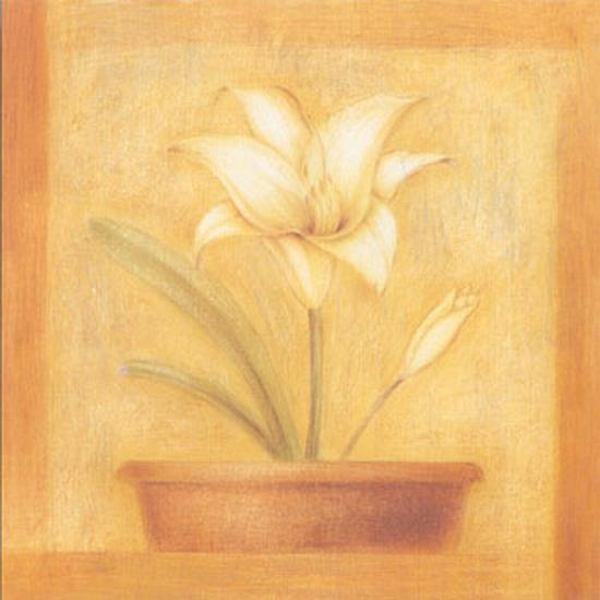 Refined Flower II-Lewman Zaid-Art Print