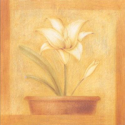 https://imgc.artprintimages.com/img/print/refined-flower-ii_u-l-epvbh0.jpg?p=0