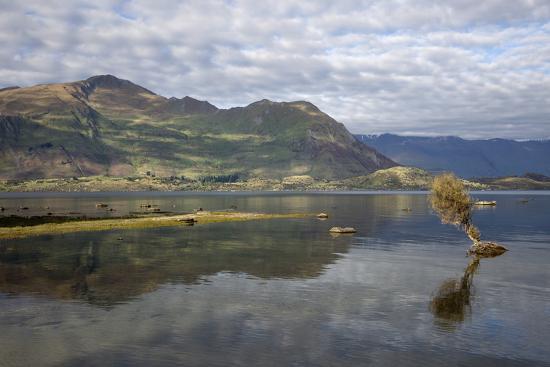 Reflection in Lake Wanaka, Wanaka, Otago, South Island, New Zealand, Pacific-Stuart Black-Photographic Print