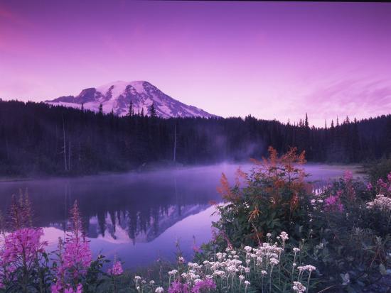 Reflection Lake with Summer Alpine Wildflowers, Mt. Rainier National Park, Washington, USA-Stuart Westmoreland-Photographic Print