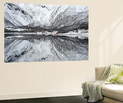 Reflection Lofoten-Philippe Sainte-Laudy-Wall Mural