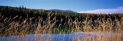 Reflection of Hills on Water, Rainy Lake, Montana, USA--Photographic Print