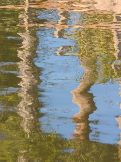 Reflection of Palm Trees in River, Jekyll Island, Georgia, USA-Joanne Wells-Photographic Print