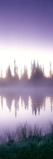 Reflection of Trees in a Lake, Mt Rainier, Mt Rainier National Park, Pierce County, Washington S...--Photographic Print