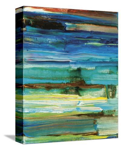 Reflection's Rock No. 6-Joan Davis-Stretched Canvas Print