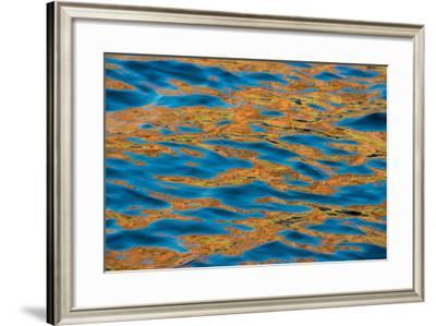Reflections Formed by Sandstone Cliffs in the King George River-Michael Melford-Framed Photographic Print