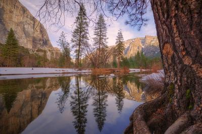 Reflections Inside The Valley Late Winter, Yosemite National Park-Vincent James-Photographic Print