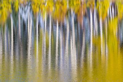 Reflections of Fall II-Kathy Mahan-Photographic Print