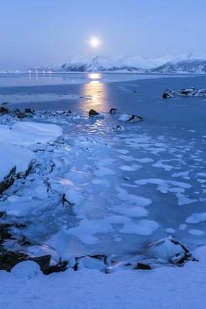 https://imgc.artprintimages.com/img/print/reflections-of-full-moon-in-the-frozen-sea-lyngedal-lofoten-islands-arctic-norway-scandinavia_u-l-pwg67i0.jpg?p=0