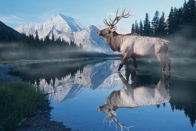 Reflections of Glacier-Gordon Semmens-Photographic Print